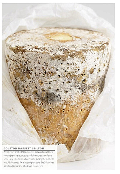 http://jennylinford.co.uk/wp-content/uploads/2015/11/Great_British_Cheeses-new-10.jpg