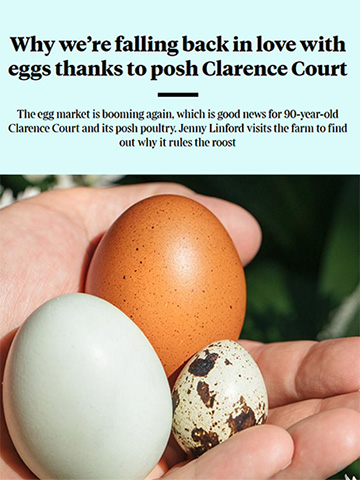 Clarence Court Eggs - Article in the The Times