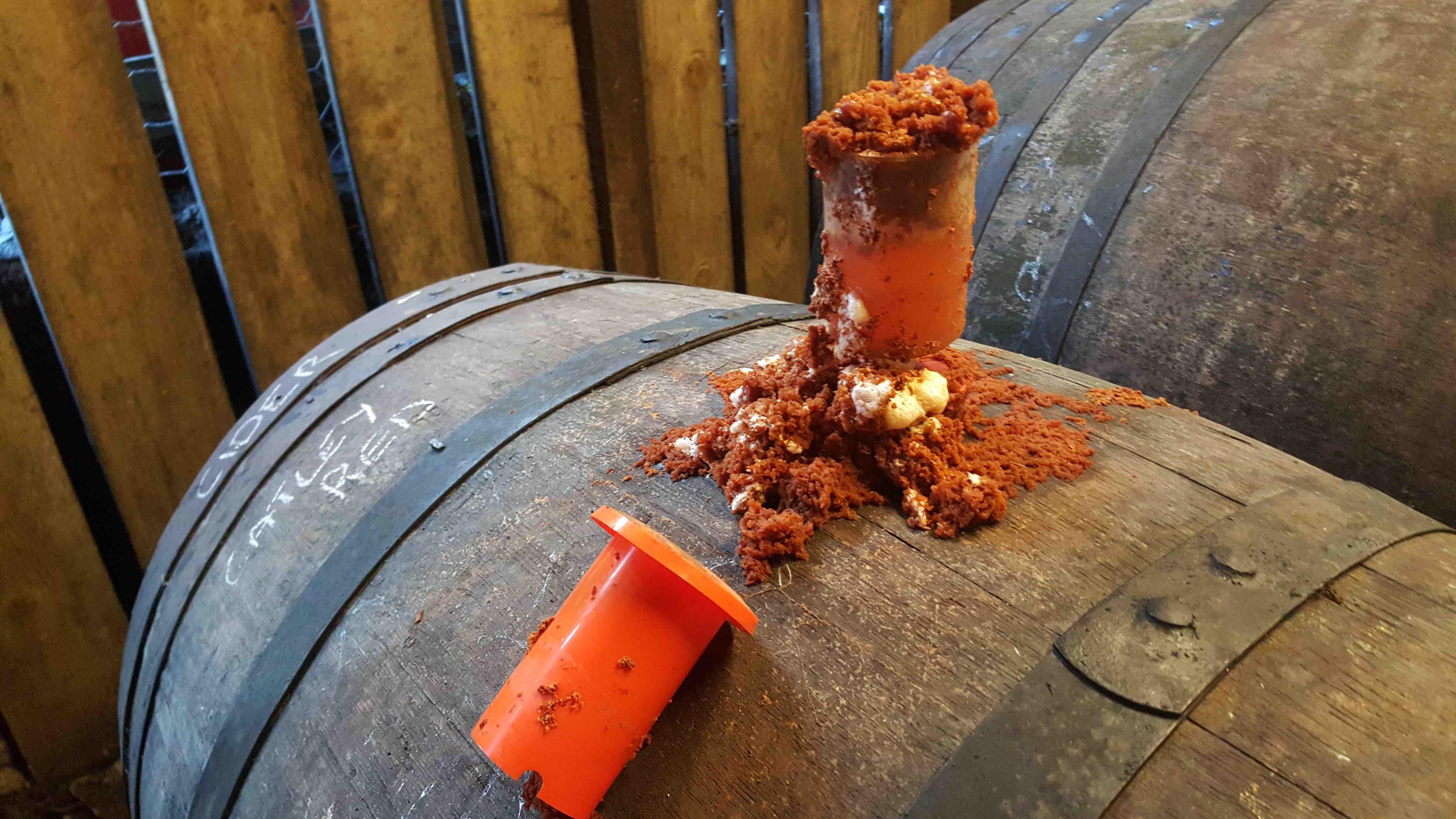 cider barrel ferment